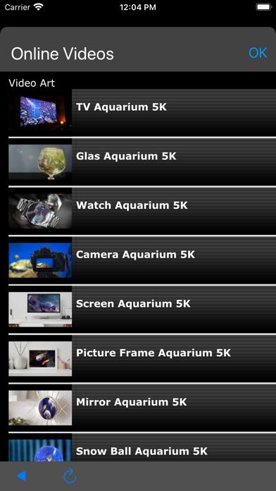 Video Art screenshot 1