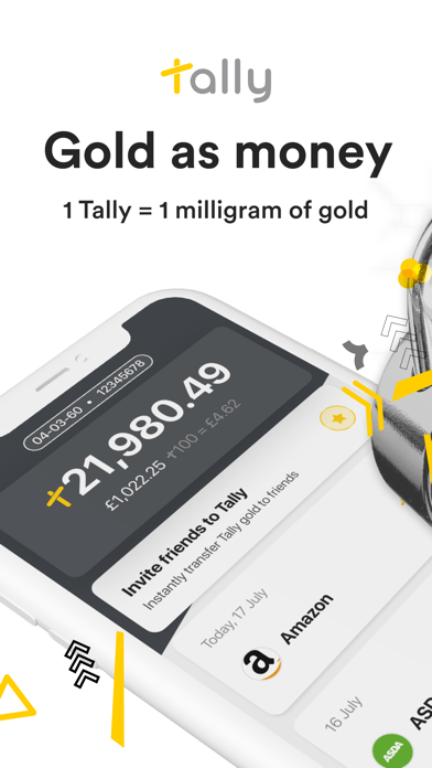 Tally - More than money screenshot one