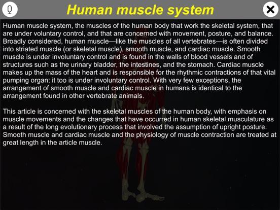 Learn Muscular System screenshot 8