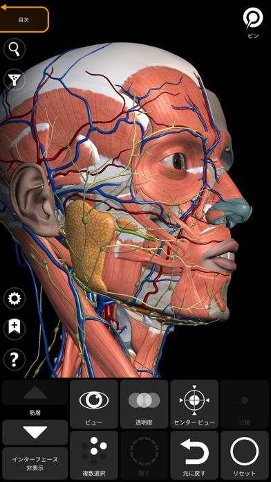 解剖学 - 3Dアトラス ScreenShot9