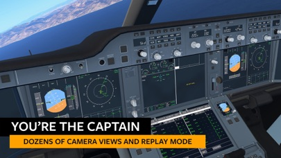 Screenshot from Infinite Flight Simulator