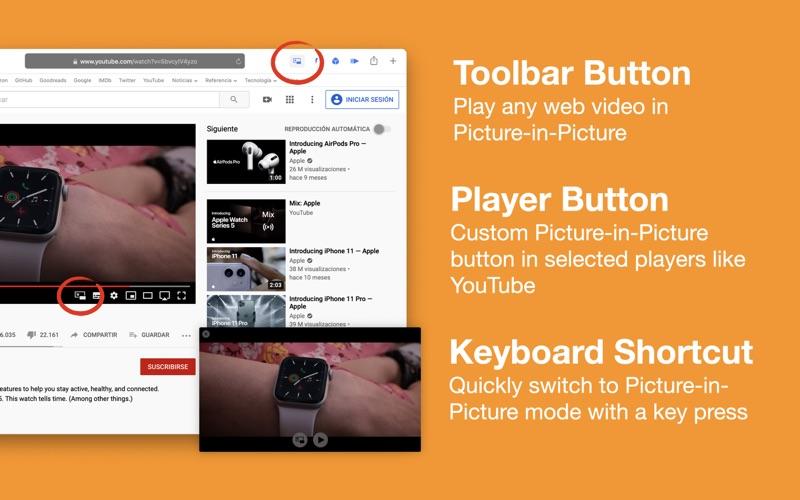 OverPicture for Safari скриншот программы 1