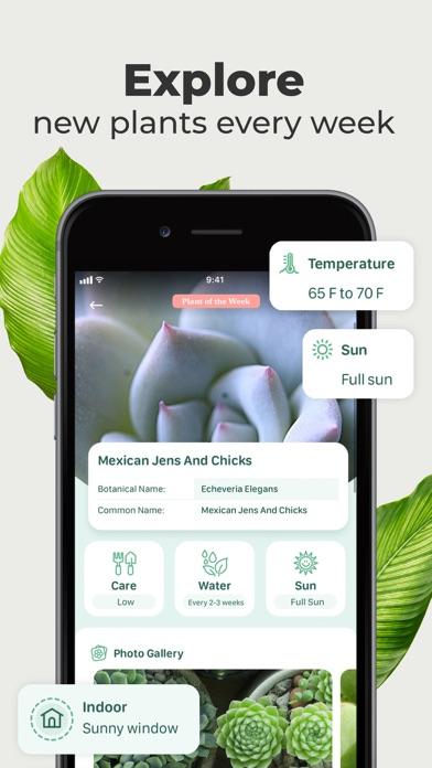 Blossom - Plant Identification Screenshot