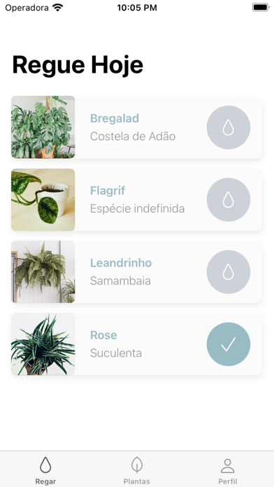 Ginkgo App screenshot 2