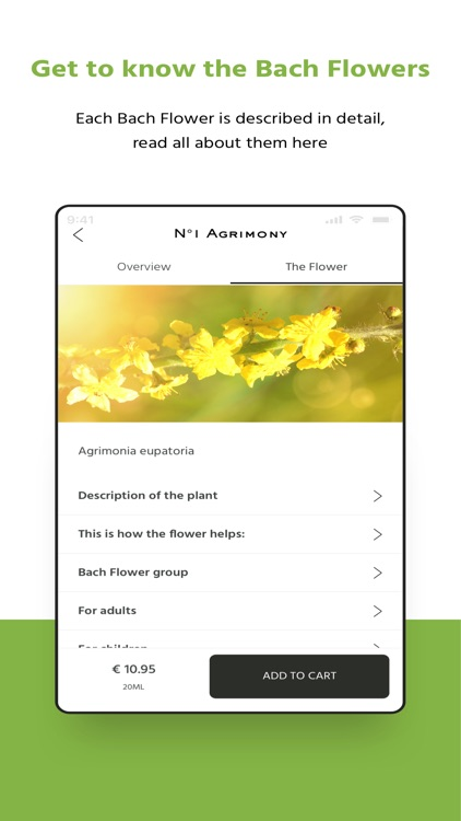Bach Flower Self-test screenshot-3