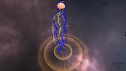 Human Nervous system screenshot 1