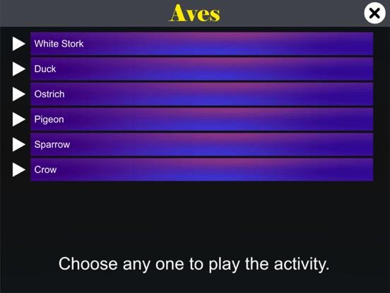 Diversity in Living: Aves screenshot 12