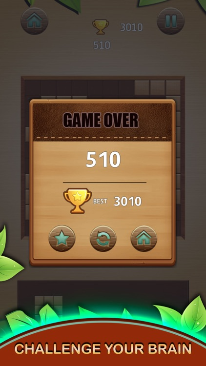 Wood Block Puzzle Box 2021 screenshot-6