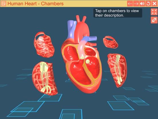 Cardiac pacemaker screenshot 11