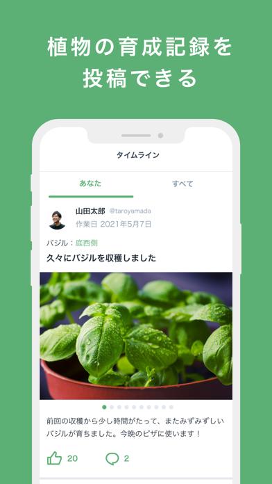 Forever Green紹介画像2