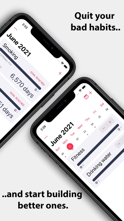 Quitter - Daily Habit Tracker screenshot-0