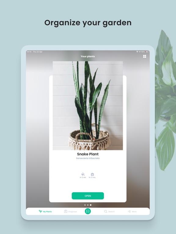 PlantIn: Plant Identifier screenshot 11