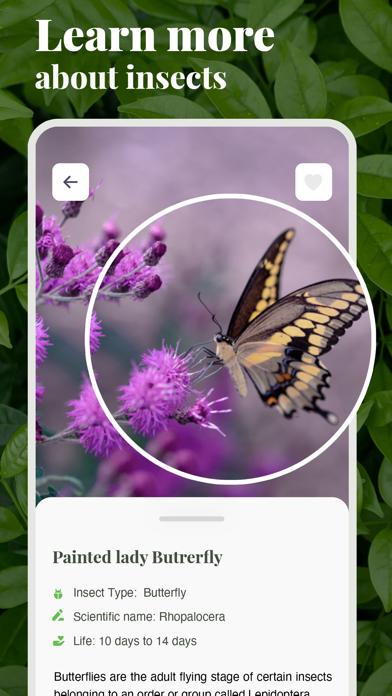 虫の名前がわかるアプリ-ものすごい図鑑昆虫判定虫図鑑のおすすめ画像2