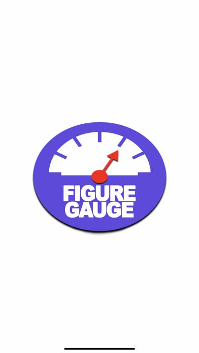 Figure Gauge紹介画像1