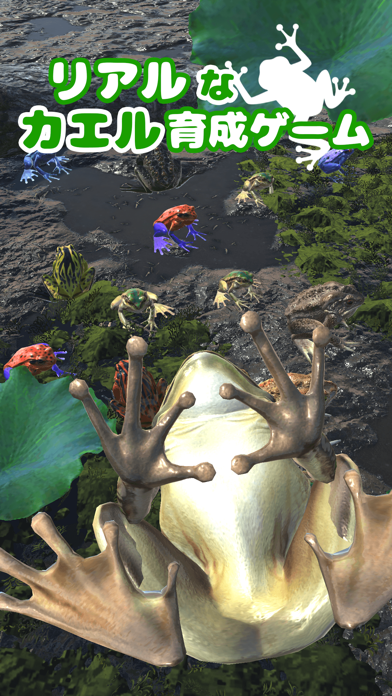 カエルといっしょ - 癒し系放置育成ゲームのおすすめ画像1