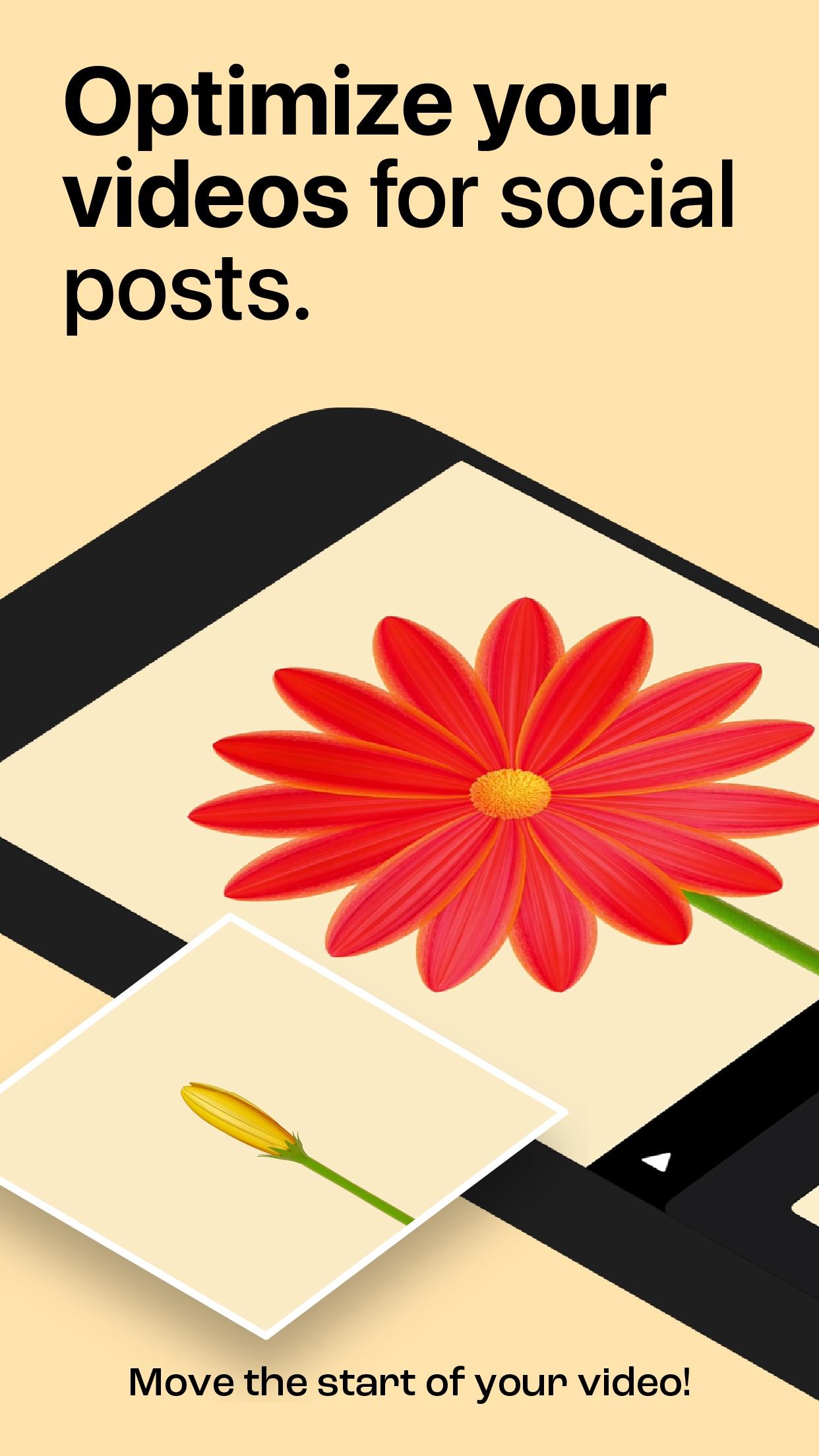 Screenshot do app Start Here by Tinrocket