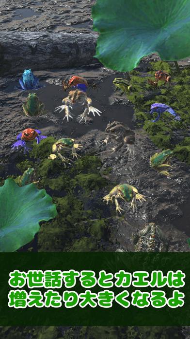 カエルといっしょ - 癒し系放置育成ゲームのおすすめ画像3
