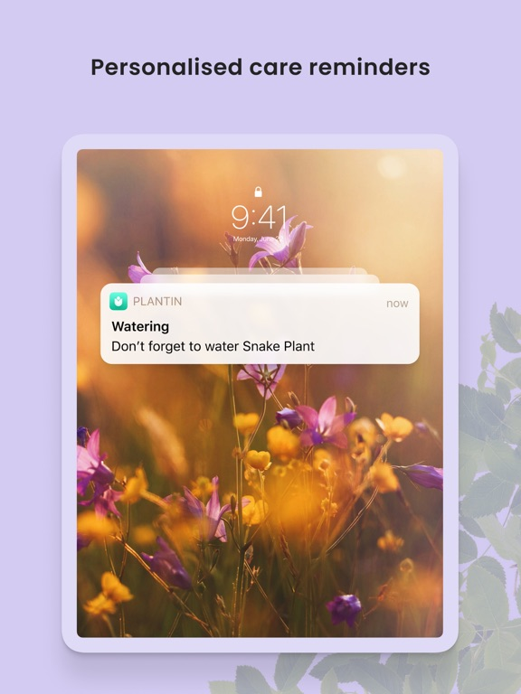 PlantIn: Plant Identifier screenshot 13