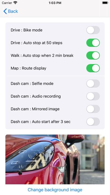 Drive & Walk screenshot-7