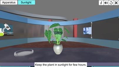 Light necessary Photosynthesis screenshot 3