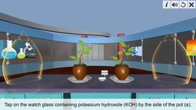 Carbon dioxide Photosynthesis screenshot 2