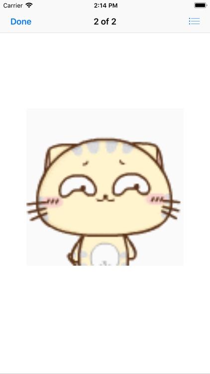 Cute yellow CC orange cat