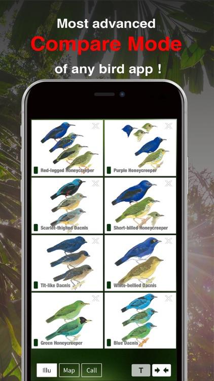 All Birds Ecuador field guide screenshot-6