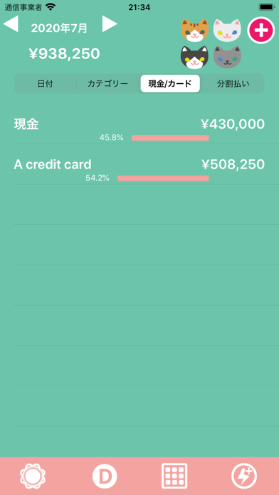 Hinakko Expense Manager ScreenShot6