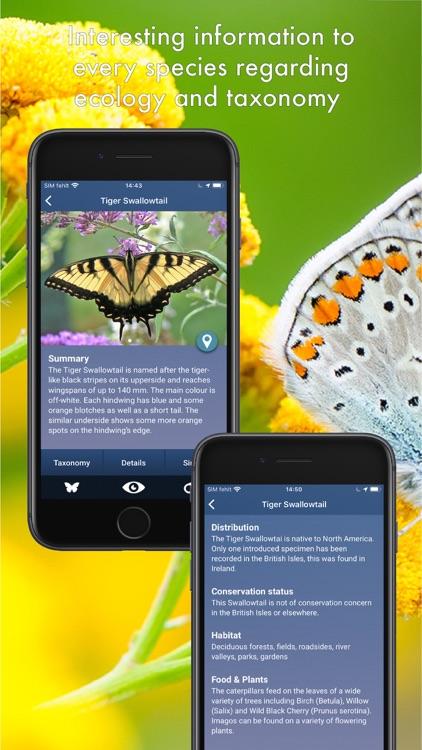 Butterfly Id - UK Field Guide screenshot-6
