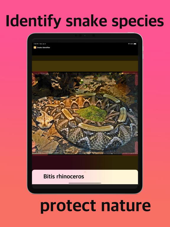 Snake Identifier screenshot 4