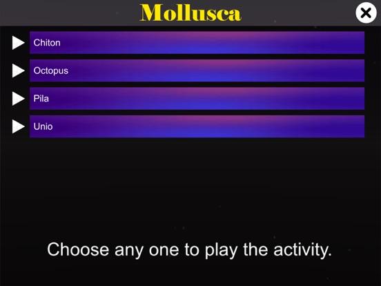 Diversity in Living: Mollusca screenshot 10
