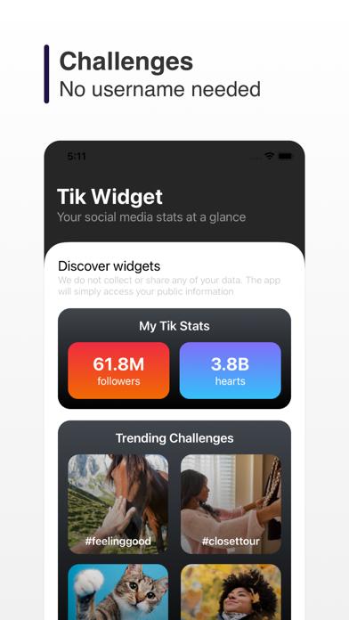 Tik Widget screenshot 3