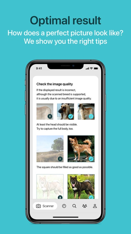 Dog Scanner screenshot-9