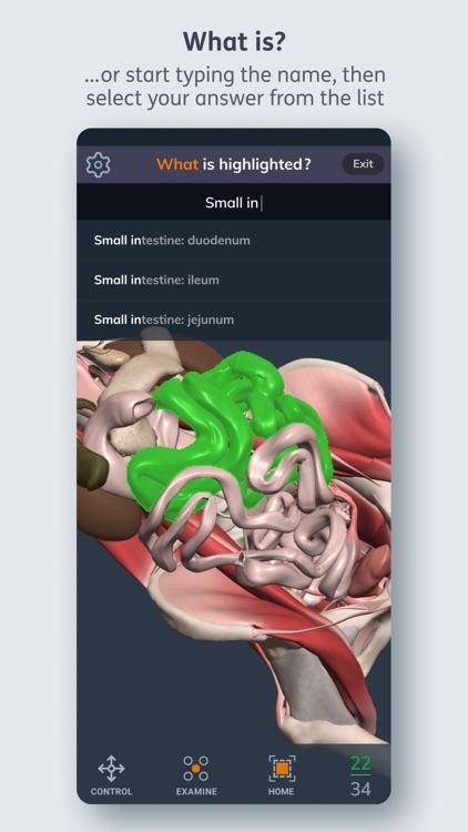 Primal's 3D Anatomy Quiz