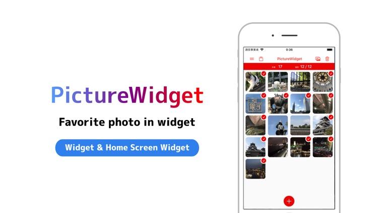 PictureWidget