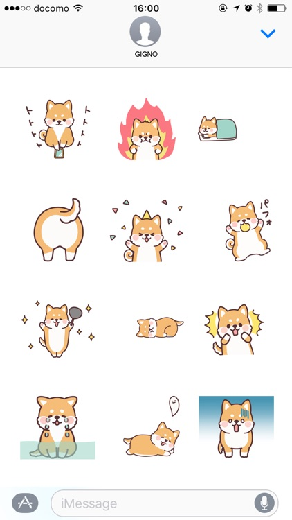fluffy fat Shiba anime2