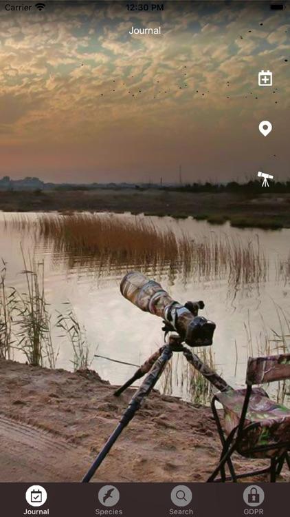 Birds Of Kuwait
