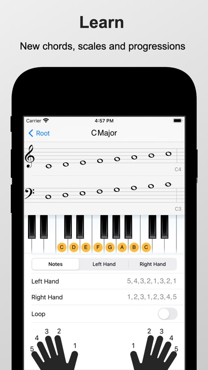 Piano Chords and Scales Pro screenshot-3