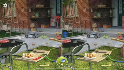 Hidden Differences - Spot Them screenshot 3