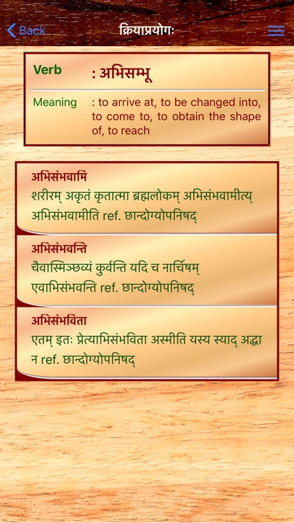Sanskrit Dhatu 360° screenshot-4