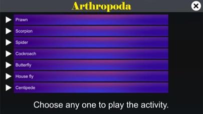 Diversity in Living:Arthropoda screenshot 1