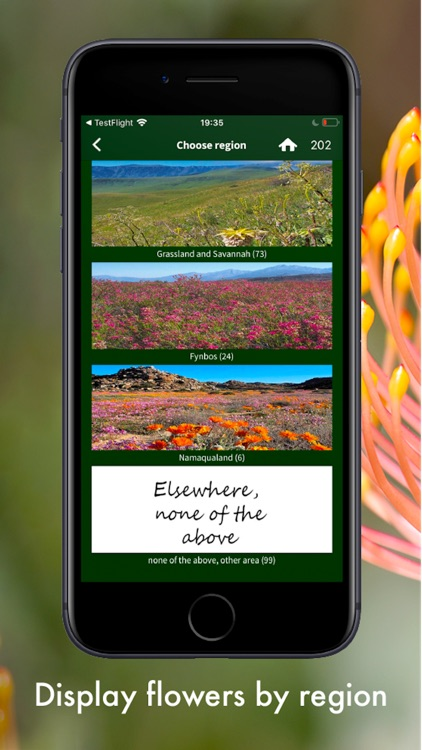 Wildflowers of South Africa screenshot-7