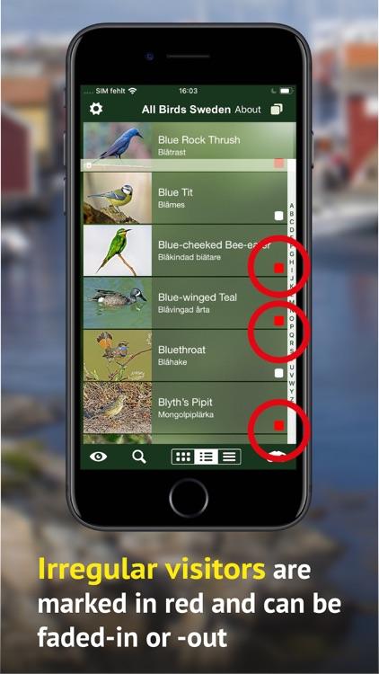 All Birds Sweden - Photo Guide screenshot-5