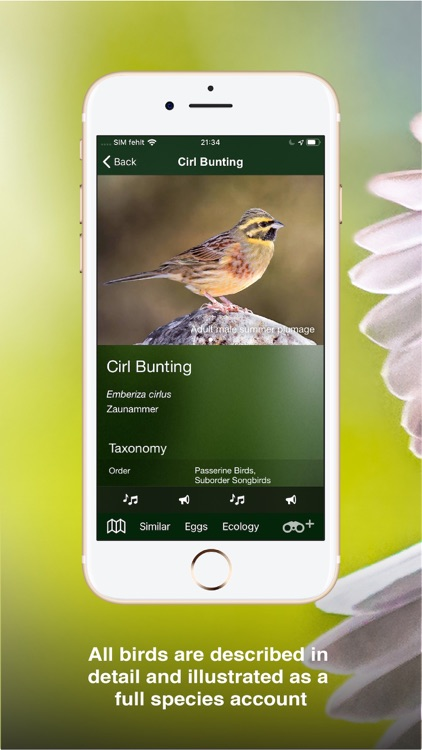 All Birds UK - the Photo Guide screenshot-3