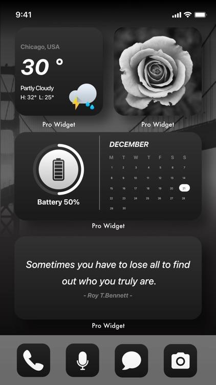 Pro Widget : Color Widgets screenshot-3