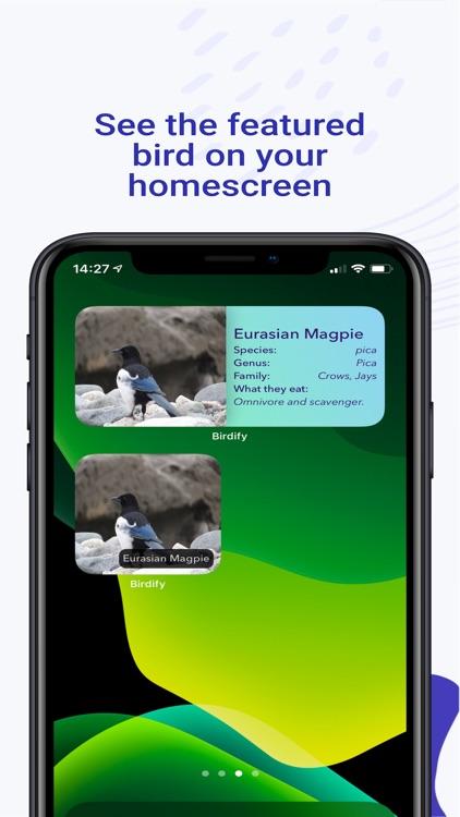 Birdify - Bird Identifier screenshot-9
