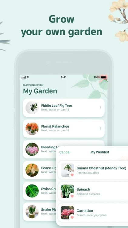 Blossom - Plant Identification screenshot-6