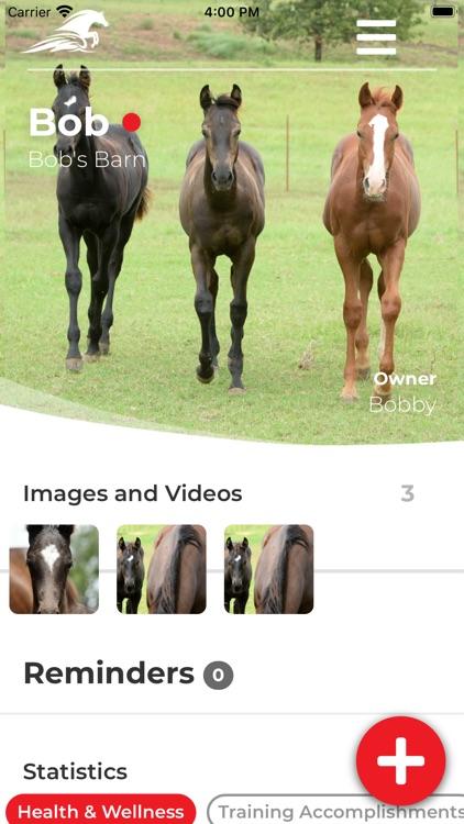 Ride Up - Equine Journal screenshot-4