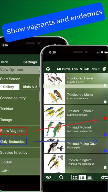 All Birds Trinidad and Tobago screenshot-4