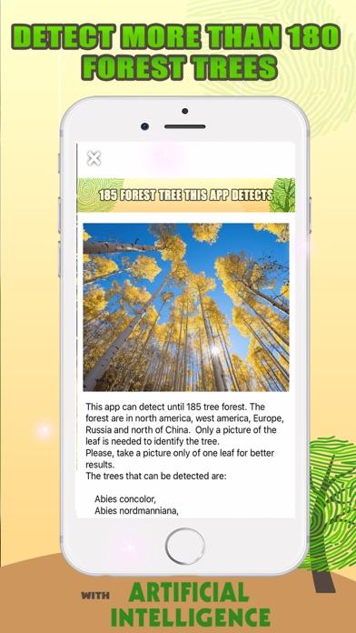 Identification des arbres IA